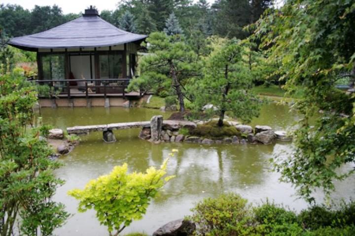 Japanischer Bonsaigarten - Ausflugsziele Brandenburg • Ab ...